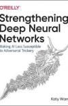 Stengthening Deep Neural Networks