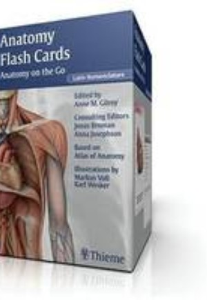 Anatomy Flash Cards, Latin Nomenclature
